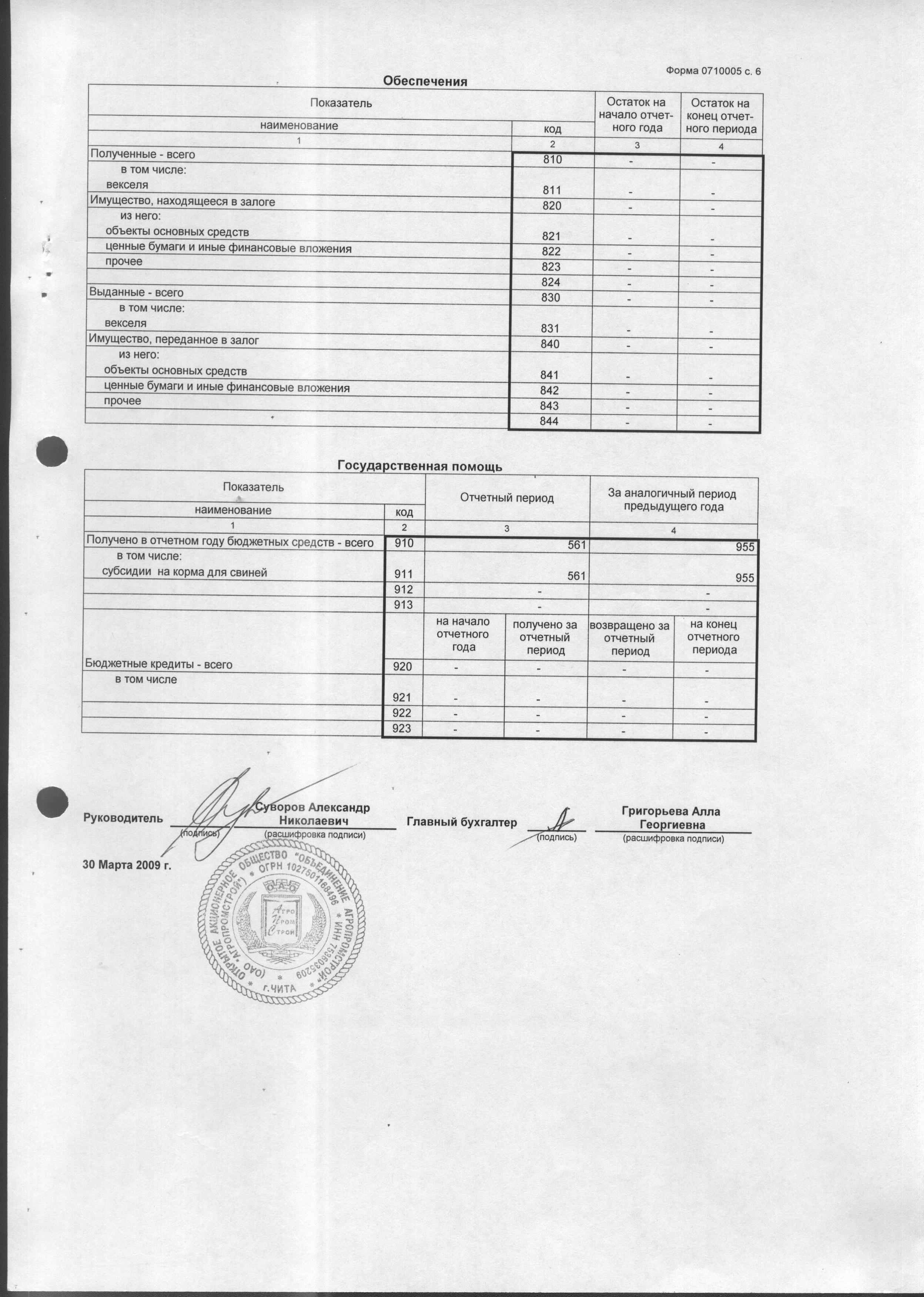 бланки бухгалтерской отчетности за 2007 год